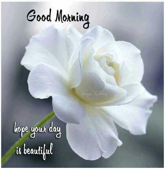 صور صباح الخير بالانجليزية 13