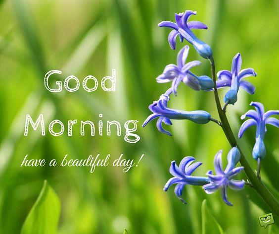 صور صباح الخير بالانجليزية 16