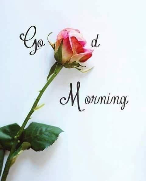 صور صباح الخير بالانجليزية 19