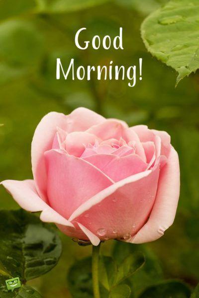 صور صباح الخير بالانجليزية 25