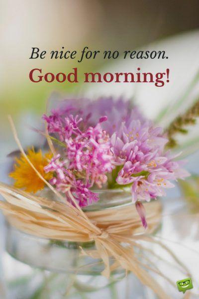 صور good morning flowers 26