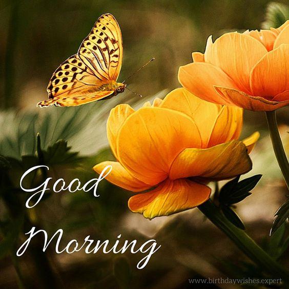 صور صباح الخير بالانجليزية 5